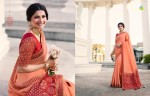 VINAY FASHION HERITAGE VOL 3 DESIGNER SAREE WHOLESALER (1).jpeg