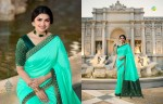VINAY FASHION HERITAGE VOL 3 DESIGNER SAREE WHOLESALER (2).jpeg