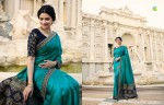 VINAY FASHION HERITAGE VOL 3 DESIGNER SAREE WHOLESALER (10).jpeg