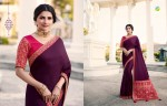 VINAY FASHION HERITAGE VOL 3 DESIGNER SAREE WHOLESALER (14).jpeg