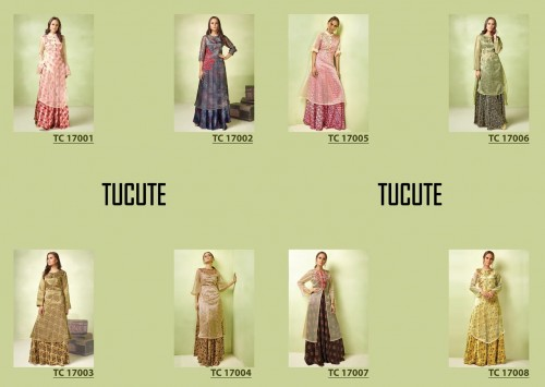 KARMA TRENDZ TUCUTE VOL 17 DESIGNER GOWN COLLECTION BUY ONLINE (13).jpeg